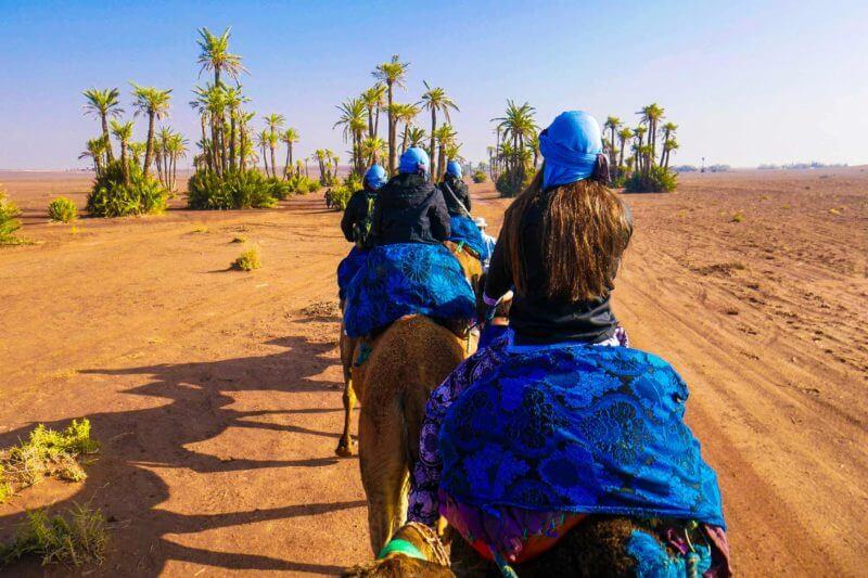 kamelentocht marrakech